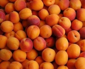 Apricot-bunch-495x400